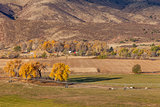 farmland at Colorado foothills