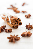 Anise and cinnamon sticks on homemade canvas close up