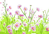 Floral illustration on white background
