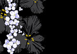 Floral illustration on black background