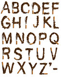 Destroyed cigarettes alphabet