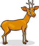 wild deer cartoon illustration