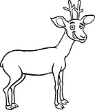 deer cartoon illustration for coloring