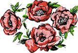 a sketch of a beautiful wreath of flowers peonies