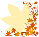 Fall background, autumn leaf