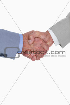 Close up side view of shaking hands
