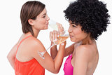 Young women crossing their hands together while drinking champag