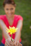 Woman holding a yellow flower at arms reach