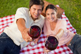 Two friends raising their glasses of wine during a picnic
