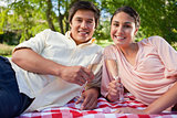 Man and his friend smiling while holding glasses during a picnic