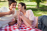 Two friends having a toast during a picnic