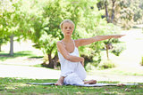 Woman in the park doing yoga exercises