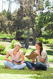 Friends reading their books in the park