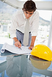 Businessman looking at construction drawings
