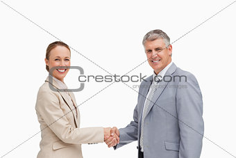 Portrait of business people shaking their hands