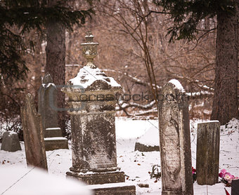 Flowers at a Grave in Winter