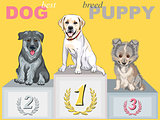 vector happy puppy dog champion on the podium
