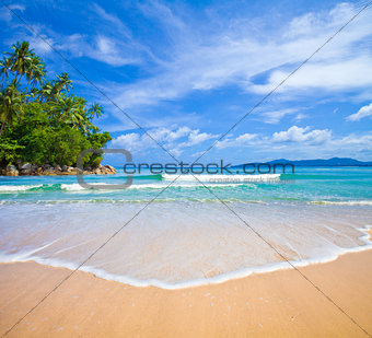 ocean beach with island and palm trees