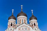 Aleksandr Nevsky Cathedral