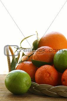 different types of citrus, lime, orange, grapefruit and mandarin