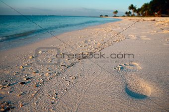 Footprint on a tropical beach