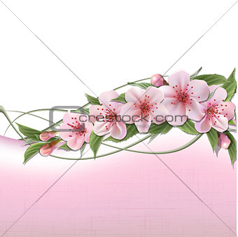 Spring header with pink cherry flowers, buds and copy space.