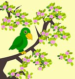 Green Parrot