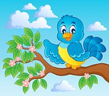 Bird theme image 7