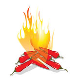 Hot chilli pepper in fire
