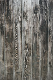 Wood Background Rustic Texture