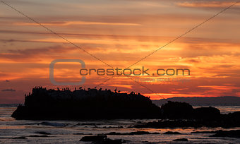 Sunset over bird rock