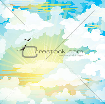Flying birds and sunset cloudy sky