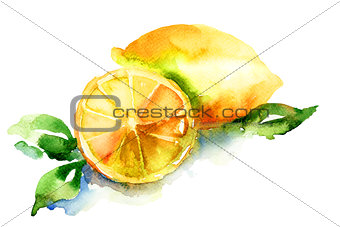 Watercolor illustration of Lemon