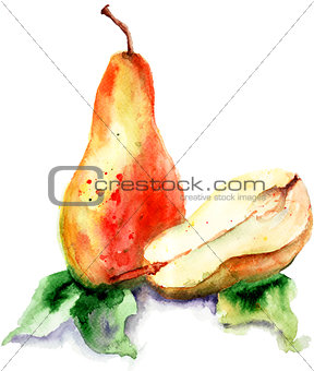 Watercolor Illustration of pears
