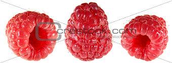 Raspberry Cutout