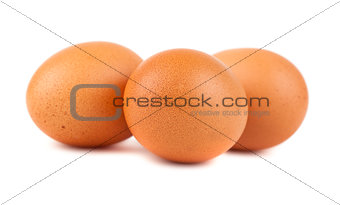 Three brown chicken eggs