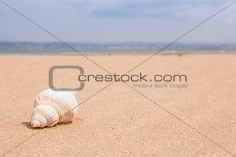 Beach scene with space for text
