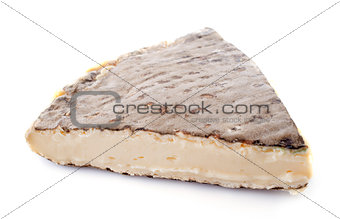 old Saint-Nectaire cheese