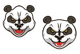 Angry panda bear