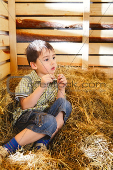 Boy on Hayloft