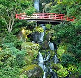 Japanese Waterfall