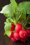 fresh radish 