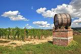 Italian winery. Castiglione Falletto, Northern Italy.