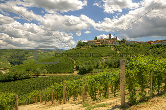 Hills and vineyards of Piedmont, Italy.