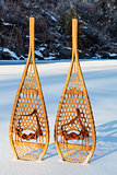 vintage Huron snowshoes