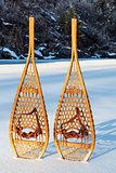 vintage Huron snowshoes