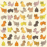 Set Of Kittens. Editable Vector Illustration