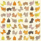 Set Of Kittens. Editable Vector Illustration