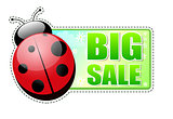 big sale green label with ladybird