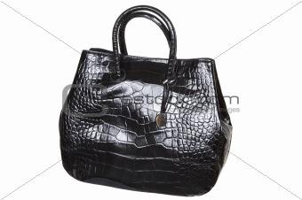 Brilliant leather bag